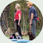 ann bechnel companion dogs training